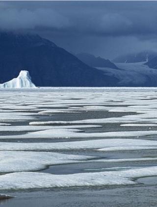 Arctic sea-ice (Image: BBC)