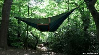 Large tent hanging from trees