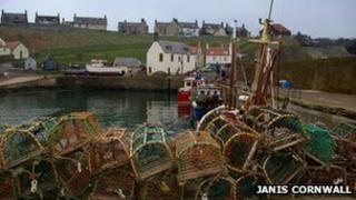 St Abbs - Image by Janis Cornwall