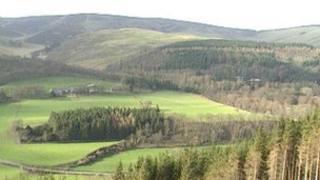 Generic rural landscape