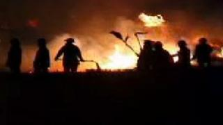 Crews tackling gorse fire with beaters