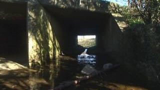 River Deben at Debenham