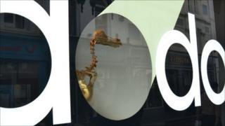 Dodo skeleton in de Gruchy's window