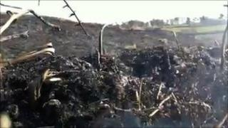 The aftermath of the moorland fire