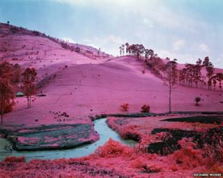 Men of Good Fortune (Infra series), 2011 © Richard Mosse. Courtesy of the artist and Jack Shainman Gallery, NY