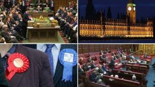 House of Commons, Palace of Westminster, party rosettes and House of Lords