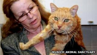 Eveline Kosenbach of the Munich animal sancuary with Poldi the cat