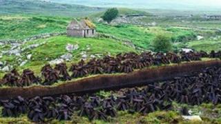 Stacks of turf