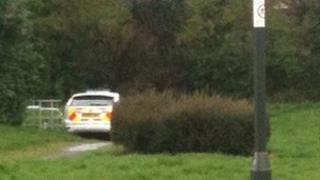 Police car in Leigh