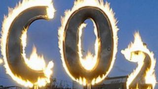 Protesters with a burning CO2 placard (Getty Images)
