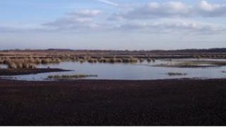 Wedholme Flow mosses, Solway Plain