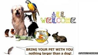 Image promoting the St Paul's pet service