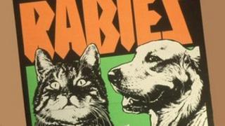 UK Rabies warning poster in 1982