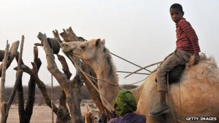 A Bedouin sits on a camel near a water point in southeastern Mauritania