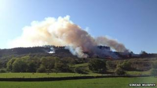 Fire is at Moneyscalp Forest