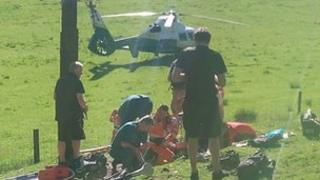 Grizedale Forest rescue