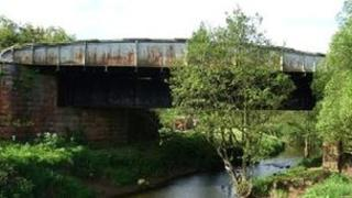 Duck bridge