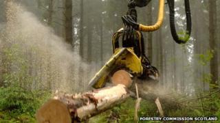 Machine sawing timber