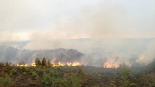 Moor fire