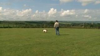 Field in Chittlehampton