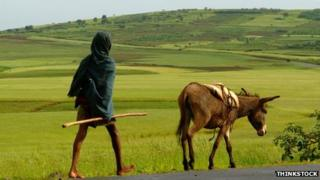 Man with donkey in Ethiopia