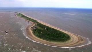 Spurn Point nature reserve, Humber Estuary
