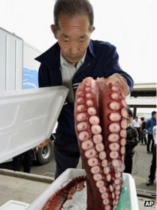 A retailer checks a chestnut octopus caught in the water off Fukushima in Soma, Fukushima Prefecture, northeastern Japan, 25 June 2012