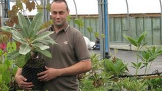 Chris Trimmer from the plant conservation centre in Devon