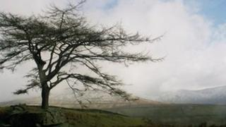 Lake District fell