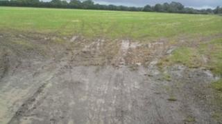 The planned site for the Woodcote Festival