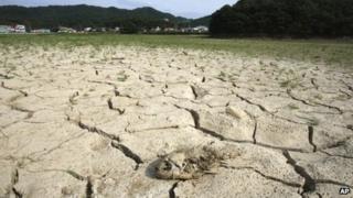 Dry reservoir in Seoul, South Korea