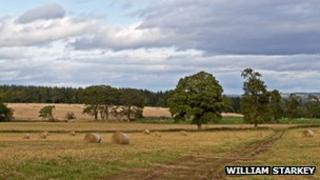 Generic picture of farmland