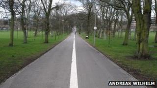 Pathway through the Meadows