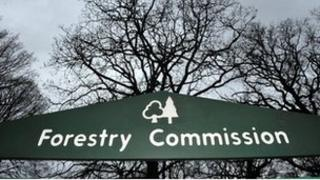 A sign of the Forestry Commission