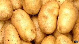 A pile of spuds
