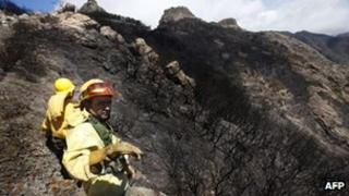 Firefighters stand amongst burnt trees after the passage of a wildfire at the National Park of Garajonay, on the Spanish canary island of La Gomera, last Tuesday