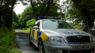 The attack happened at Randalstown forest