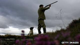 Gamekeeper shooting on moor