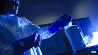 Man handling frozen cells