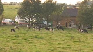 Farm in Welby