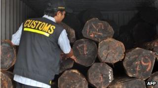 Customs intercept illegal logs