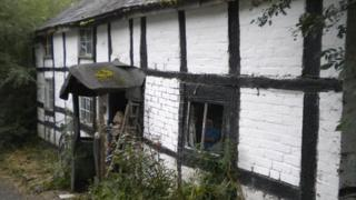 The cottage near Llanidloes