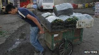 A worker pulls a cart loaded with cucumbers near Nablus, West Bank. Photo: September 2012