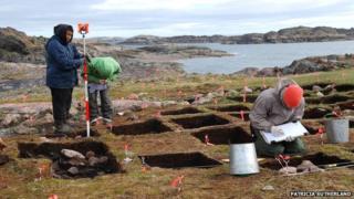 Cape Tanfield excavation
