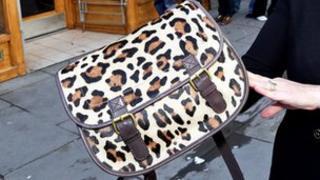 Annie Lennox bag [Pic: Rory Raitt]