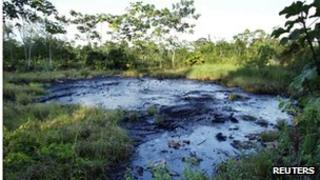 File photograph showing crude oil in a jungle clearing in 2003