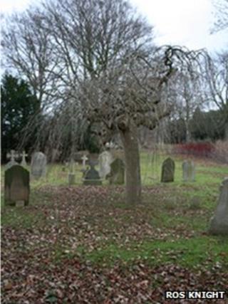 Fairfield Hospital cemetery