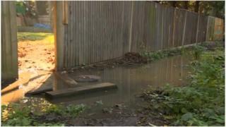 Sewage puddle