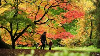 A mother and child enjoy the Autumn colours at Westonbirt Arboretum in Gloucestershire