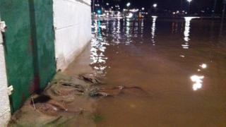 Dumfries flooding
